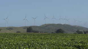 Parc éolien R del Sur en Uruguay.