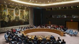 Le Conseil de sécurité de l'ONU a adopté à l'unanimité vendredi une résolution française qui permet de « prendre toutes les mesures nécessaires » pour combattre le groupe Etat islamique.