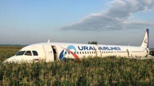 L'Airbus 321 d'Ural Airlines a atterri d'urgence dans un champ de maïs, non loin de l'aéroport de Joukovski, dans la banlieue de Moscou, le 15 août 2019.