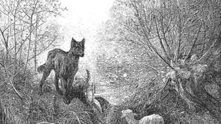 'Le loup et l'agneau'  de La Fontaine.