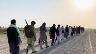 کاروان صلحخواهان هلمندی، برای برقراری صلح و پایان جنگ، تاکنون به بیش از ۲۰ ولایت افغانستان با پای پیاده سفر کردهاند.