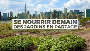 Se nourrir demain, des jardins en partage - Un long format à découvrir