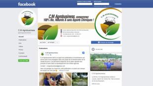 Capture d'écran du site facebook de l'entreprise CM Agrobusiness située à Brazzaville. Cette entreprise est dirigée par Clenne Mouangou, originaire du Congo et membre de la diaspora africaine en France.