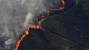 Part of the massive wildfire currently ravaging central Portugal.