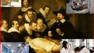 Site explica os procedimentos e a importância da doação de corpos para a ciência.