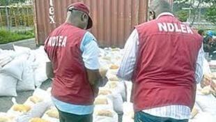 Jami'an hukumar yaki da sha ko fataucin miyagun kwayoyi NDLEA a Nigeria