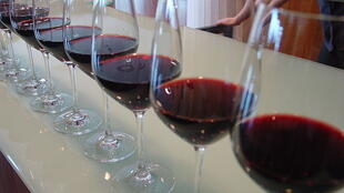 Santé! - a flight of glasses for a red wine tasting