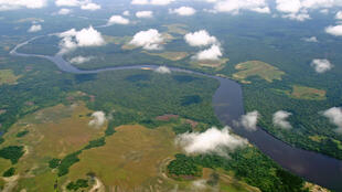 The Congo Basin is the world's second largest area of tropical rainforest.