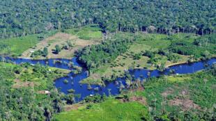 Floresta Amazônica emite cada vez mais CO2 devido a desmatamentos.