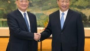 中共總書記習近平(右)與前國民黨主席連戰2015年9月1日北京