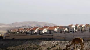 """Assentamento israelense na polêmica região """"E1"""", que liga a parte leste de Jerusalém à colônia de Maale Adoumim, na Cisjordânia."""