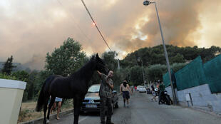 A man evacuates a horse as smoke from a burning wildfire fills the sky in Carros, near Nice on 24 July, 2017.