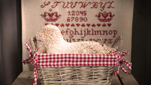 Пасхальный эльзасский барашек