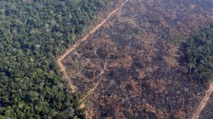 Une vue aérienne de la forêt amazonienne après un incendie près de Porto Velho au Brésil le 29 août 2019.