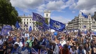 Лондон. 09.09.2017 Манифестация противников выхода Великобритании из ЕС