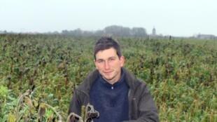 Một người nông dân trước cánh đồng yến mạch, hướng dương bio.