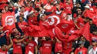 Les supporters tunisiens fêtent la cinquième qualification de leur pays au Mondial.