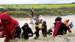 Người Rohingya Miến Điện tìm đường sang Bangladesh. Ảnh ngày 01/09/2017.