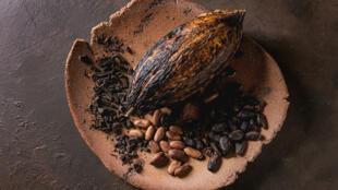 [Image d'illustration] Des fèves de cacao.