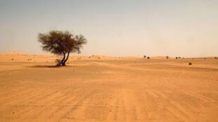 Wani yanki na Hamadar da ta ratsa Jamhuriyar Nijar zuwa cikin kasar Algeria.