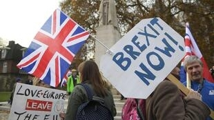 Demonstrators supporting Brexit protest outside of the Houses of Parliament in London, Britain, November 23, 2016.