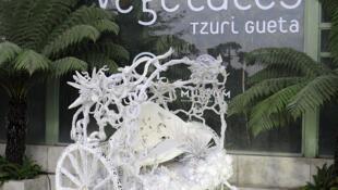 Noces Végétales by Tzuri Gueta, at Jardin des Plantes in Paris