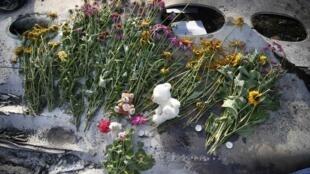 人們在馬航墜毀的客機殘骸上擺上野花寄託哀思
