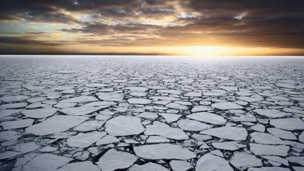 Antarctica's Ross Sea is the last pristine and intact marine ecpsustem on Earth.