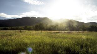 Vivir en el campo cerca de viñedos u otras zonas agrícolas puede ser peligroso, al estar expuestos a numerosos pesticidas.