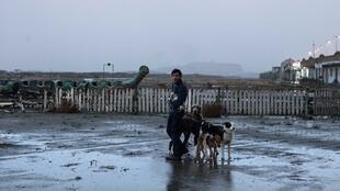 Marcello Fonte dans «Dogman», du réalisateur italien Matteo Garrone.