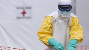 ONU anuncia fim da epidemia de ébola na Guiné Conacry e em África ocidental duma maneira geral.