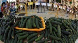 Продажа огурцов в Испании