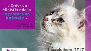 Partido Animalista da França defende a criação de Ministério da Proteção Animal.