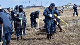 La policía continúa buscando restos de personas desaparecidas en el accidente nuclear, cerca de la central de Fukushima, , en Namie, el 11 de marzo de 2015.