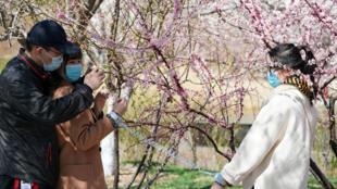 2020-03-30T064057Z_70628800_RC26UF9XTAM6_RTRMADP_3_HEALTH-CORONAVIRUS-CHINA