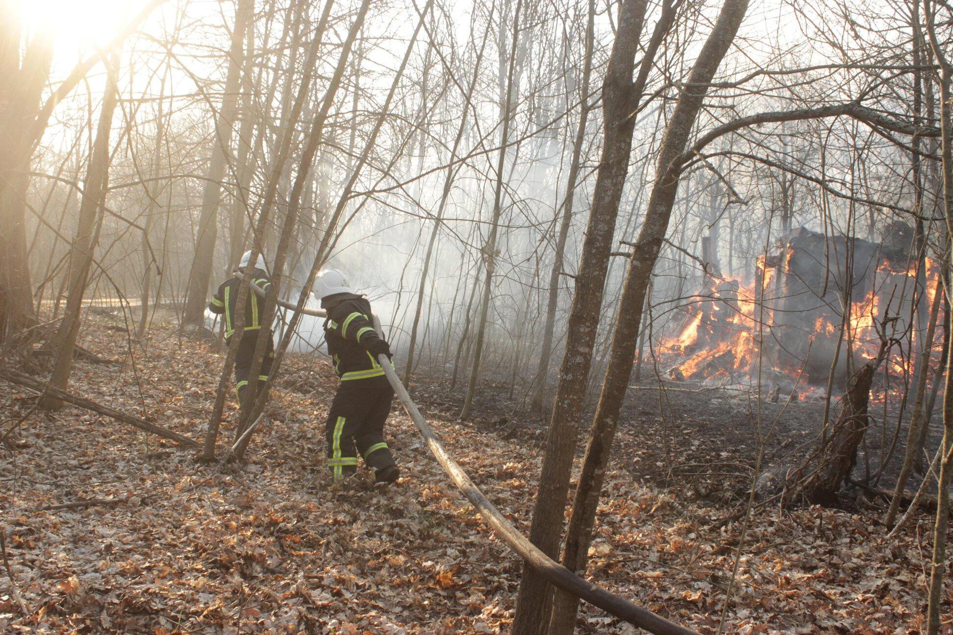 Тушение лесных пожаров в зоне отчуждения ЧАЭС, 10 апреля 2020 г.