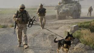 Soldats de l'Otan en Afghanistan.