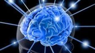A epilepsia é uma descarga elétrica desorganizada que atinge os neurônios cerebrais, provocando sintomas correlacionados com a área cerebral afetada.