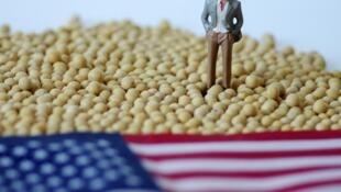 图为中美大豆贸易示意图