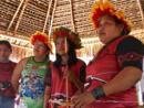 Affaires - Défense de l'Amazonie, le combat des guerrières indigènes (Rediffusion)