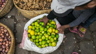 Sales of lemons, ginger, herbs and spices have soared in Madagascar, spurred by unfounded claims that natural brews will thwart coronavirus