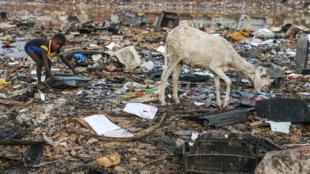 Agbogbloshie, dans la banlieue d'Accra, est la plus vaste décharge de déchets électroniques au monde.