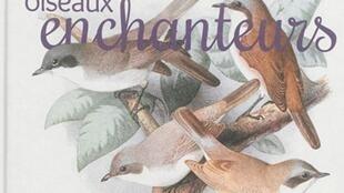 «Les oiseaux enchanteurs», de Guilhem Lesaffre.