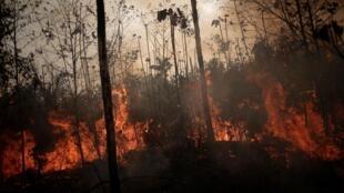 Một khu rừng đang cháy ở Porto Velho, Brazil ngày 23/08/2019.