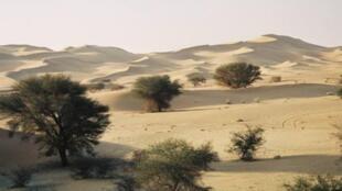 Une zone desertique du Niger.