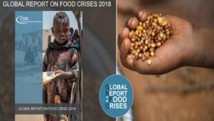 """در گزارش """"شبکۀ جهانی اطلاعرسانی دربارۀ امنیت غذایی""""، در سال ٢٠۱٨، آفریقا بیش از سایر قارهها دچار مصیبت گرسنگی و قحطی بوده است"""
