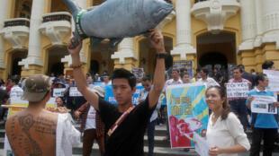 Người dân Hà Nội biểu tình ngày 01/52016 kêu gọi bảo vệ biển sau vụ cá chết hàng loạt tại vùng biển miền Trung Việt Nam.