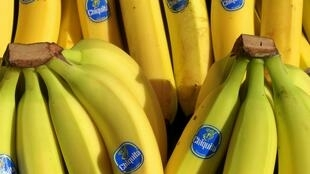 Des bananes sur leur étal.