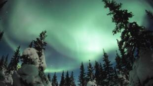 Des aurores boréales, ces fameux voiles colorés verdoyants, qui ont intrigué, fasciné des générations.