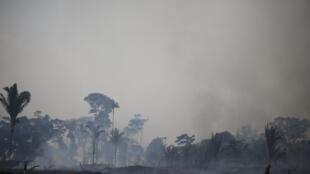 El Niño provocará fortes incêndios na Amazônia